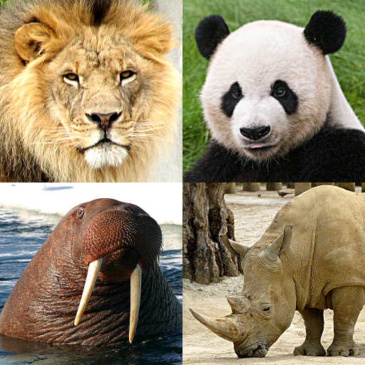 Animals Quiz – Learn All Mammals and Dinosaurs! 3.2.0