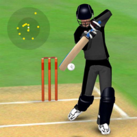 Smashing Cricket a cricket game like none other  3.1.3