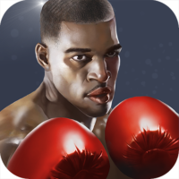 Punch Boxing 3D  1.1.4