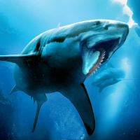 Helicoprion Simulator 1.0.4